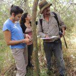 Reserva Ecol+¦gica Urbana 110